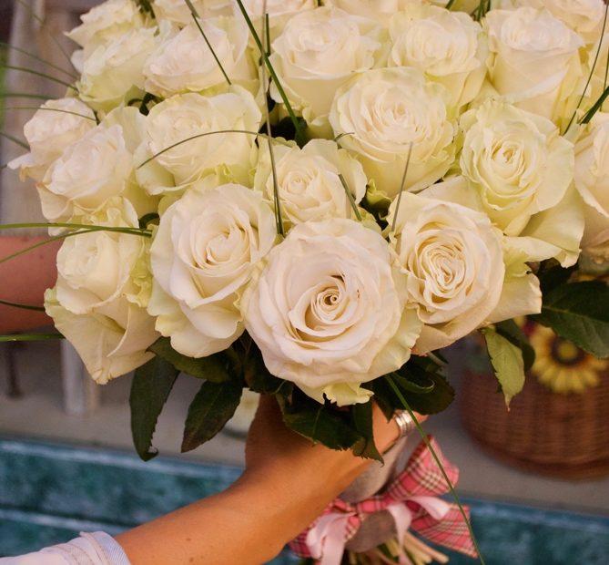 kytica biele ruze